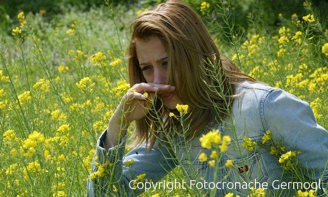 Allergie e pollini 10 rimedi naturali 055firenze - L allergia porta sonnolenza ...
