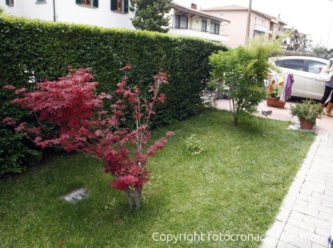Awesome sanzioni per chi non mantiene sicurezza e decoro in giardino with foto giardini privati - Giardini privati foto ...